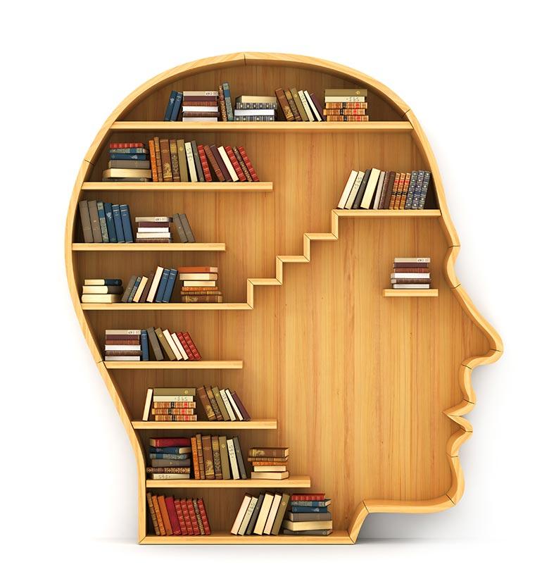 Bibliothèque cerveau - formation et apprentissage